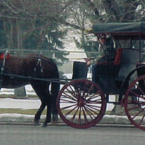 horse-and-carriage-mary-mels-clipper