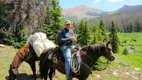 Jon-on-Gilber-18-yr-gelding-by-Indigo-and-Mt-Valley-bluebell