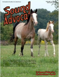 Sound Advocate May cover 2014